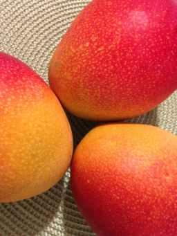 One Mango a.k.a Kaeree